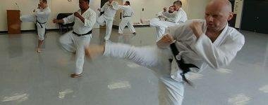 Jiyu Kumite (Free Sparring) Practice